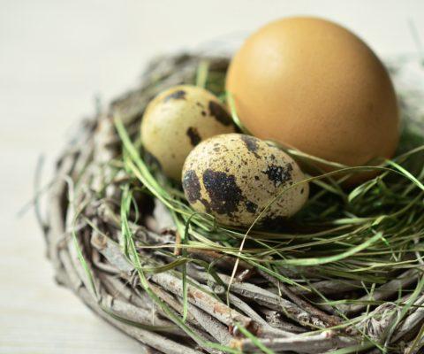 Hilpert wünscht Frohe Ostern