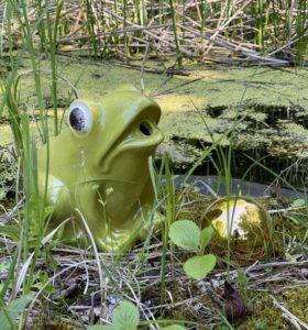 Brunnenfigur Frosch Fisch aus Keramik (Wasserspeier)